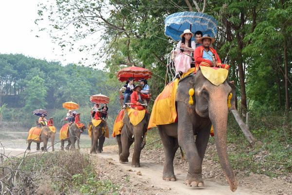 Chang Puak Camp Chiang Rai